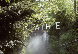 Breathe Earth Collective – Hybrid Forests in Urban Environments