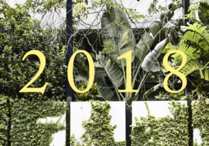 2018: The Year That Was