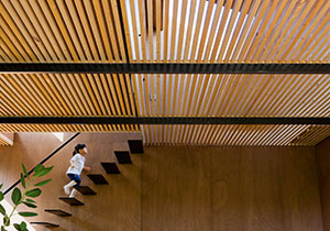 Wood In Architecture Now! Vol 2
