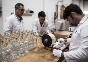 For the Love of Gin: Poor Tom's Sydney Dry Gin
