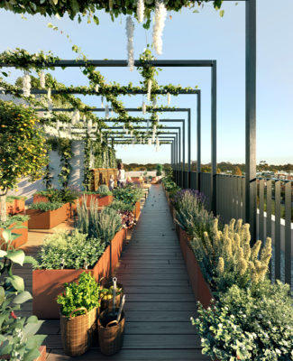 Rooftop gardens at 17 Union Street by NEOMETRO.