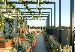 The Rooftop: Developing The Last Urban Frontier